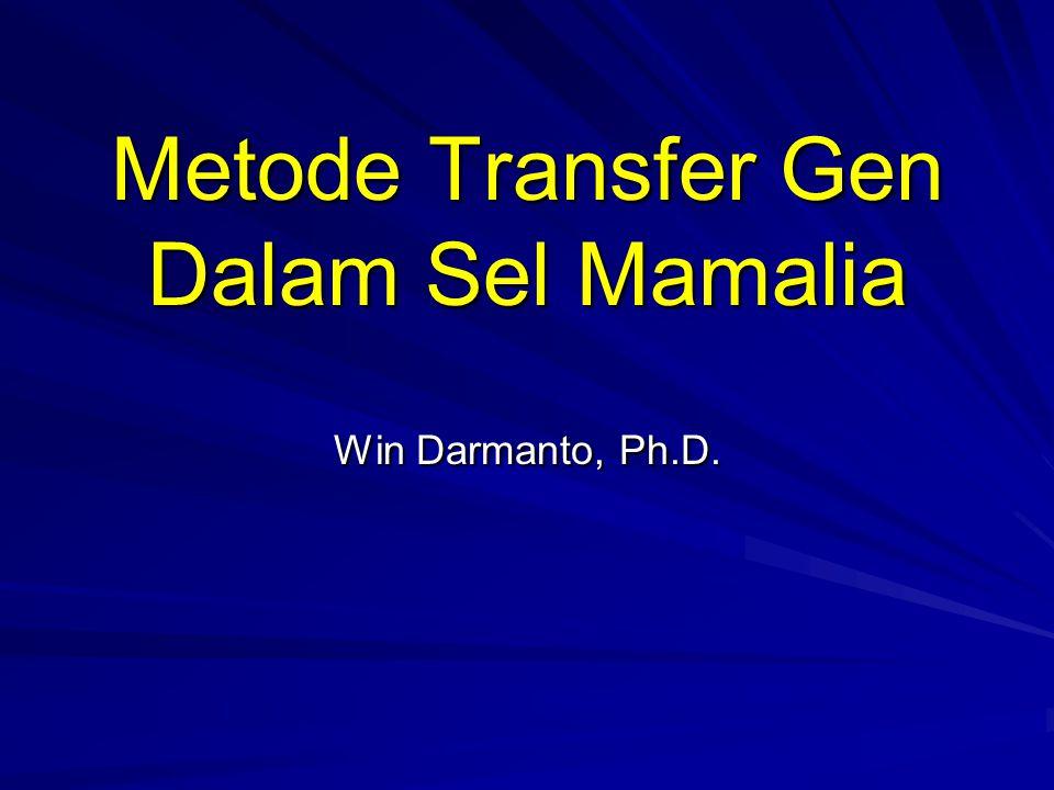 Metode Transfer Gen Dalam Sel Mamalia Win Darmanto, Ph.D.
