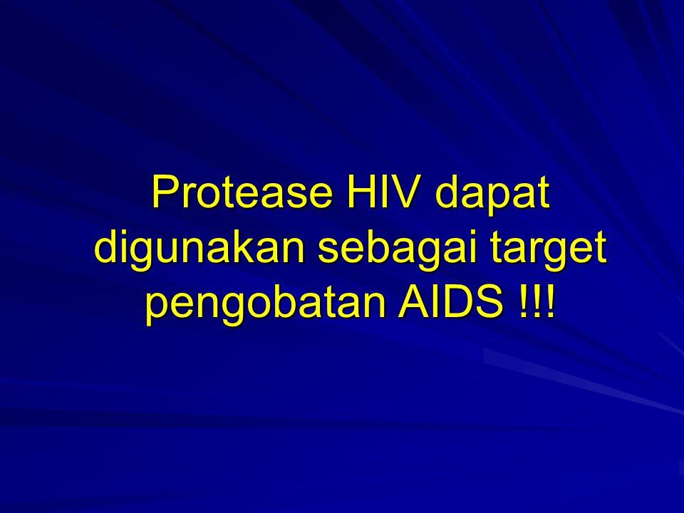 Protease HIV dapat digunakan sebagai target pengobatan AIDS !!!
