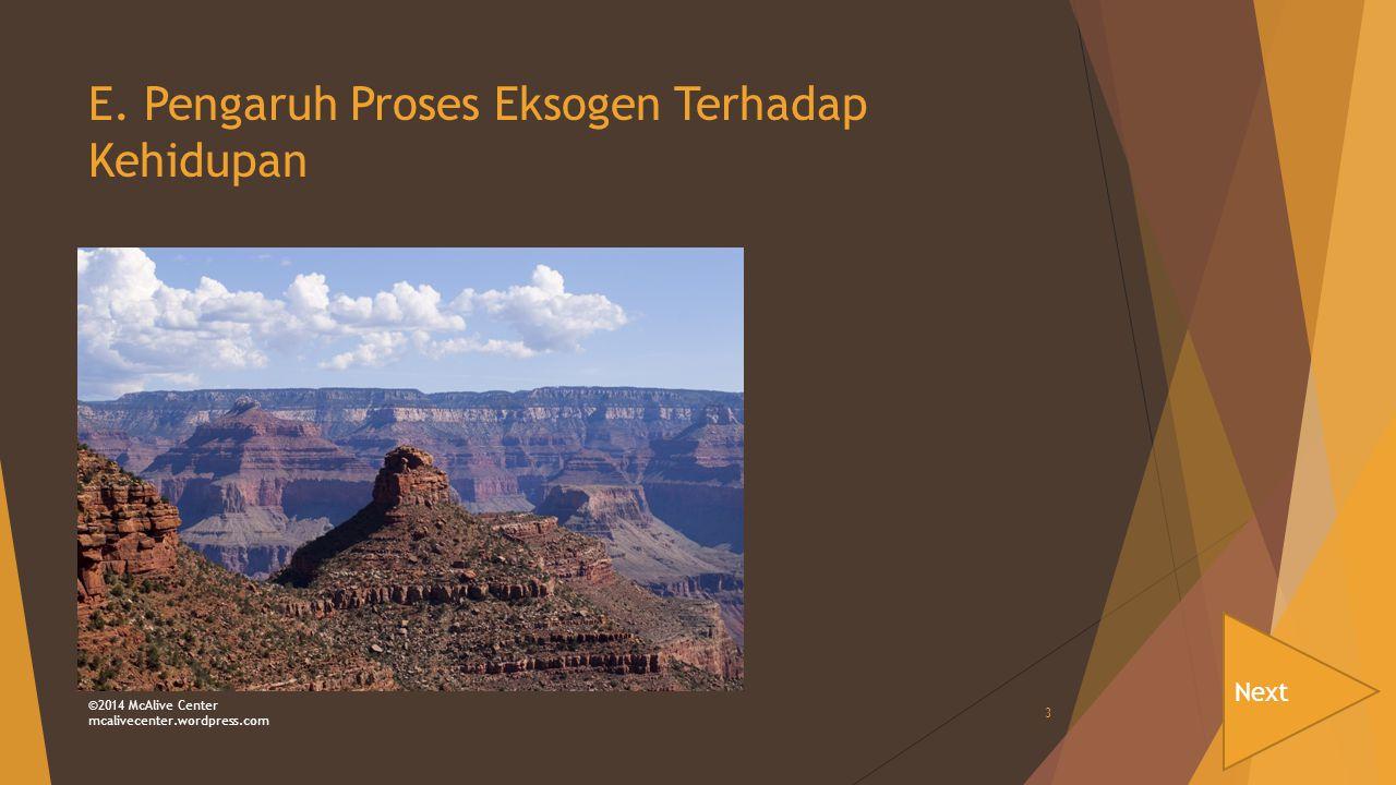 E. Pengaruh Proses Eksogen Terhadap Kehidupan Next ©2014 McAlive Center mcalivecenter.wordpress.com 3