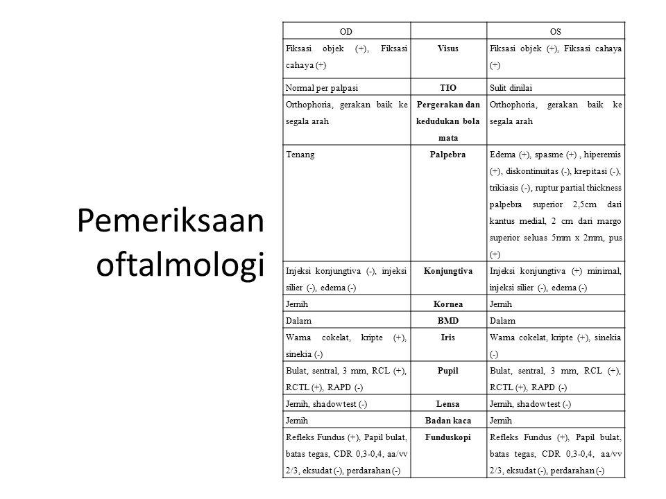 Pemeriksaan oftalmologi ODOS Fiksasi objek (+), Fiksasi cahaya (+) Visus Fiksasi objek (+), Fiksasi cahaya (+) Normal per palpasiTIOSulit dinilai Orth