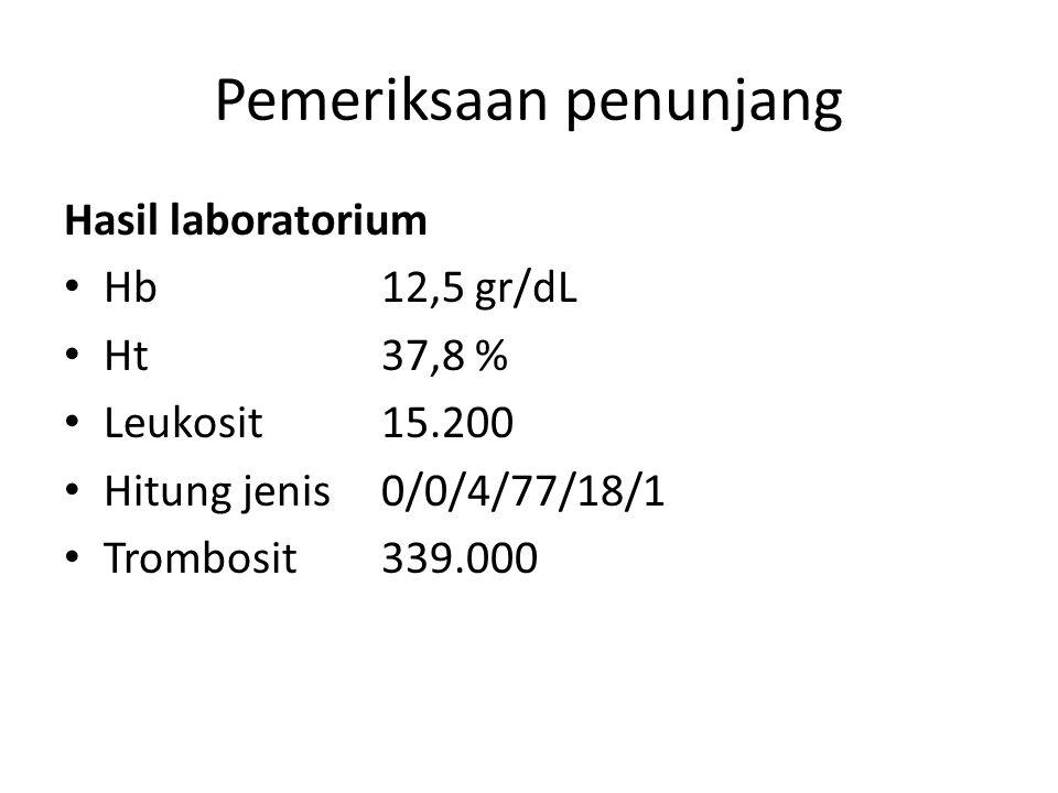 Pemeriksaan penunjang Hasil laboratorium Hb12,5 gr/dL Ht37,8 % Leukosit15.200 Hitung jenis0/0/4/77/18/1 Trombosit339.000