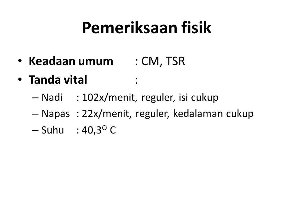 Pemeriksaan fisik Keadaan umum: CM, TSR Tanda vital: – Nadi: 102x/menit, reguler, isi cukup – Napas: 22x/menit, reguler, kedalaman cukup – Suhu: 40,3