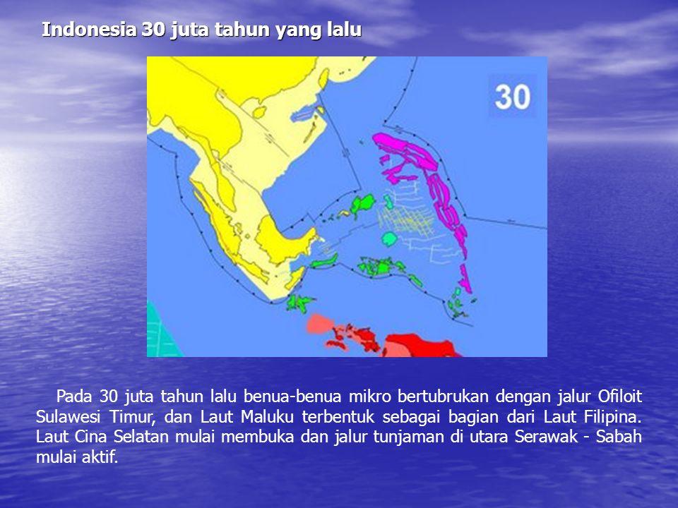 Indonesia 40 juta tahun yang lalu Pada 40 juta tahun lalu Lengan Utara Sulawesi terbentuk bersamaan dengan jalur Ofiolit Jamboles. Sedangkan jalur Ofi