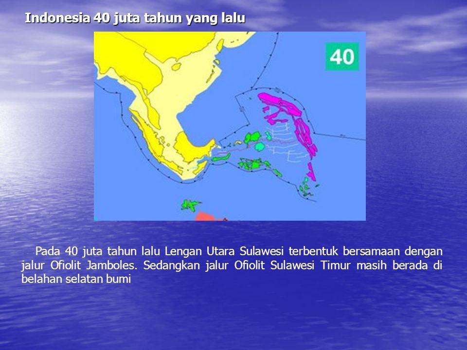Indonesia 50 juta tahun yang lalu (awal Eosen) Setelah benua kecil india bertubrukan dengan himalaya, ujung tenggara benua eurasia bergerak lebih jauh