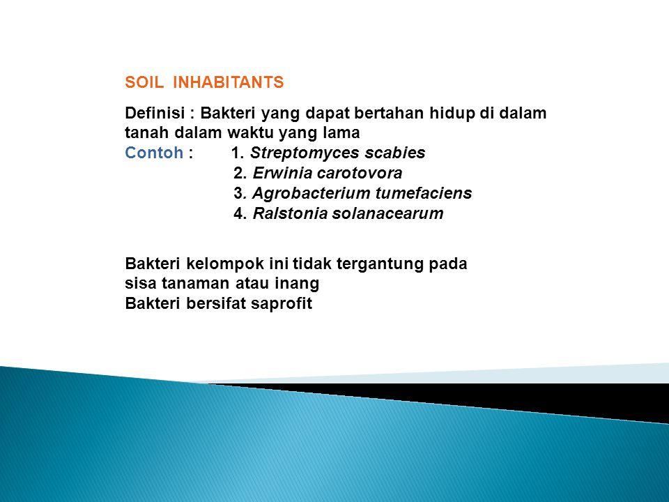 SOIL INHABITANTS Definisi : Bakteri yang dapat bertahan hidup di dalam tanah dalam waktu yang lama Contoh : 1. Streptomyces scabies 2. Erwinia carotov