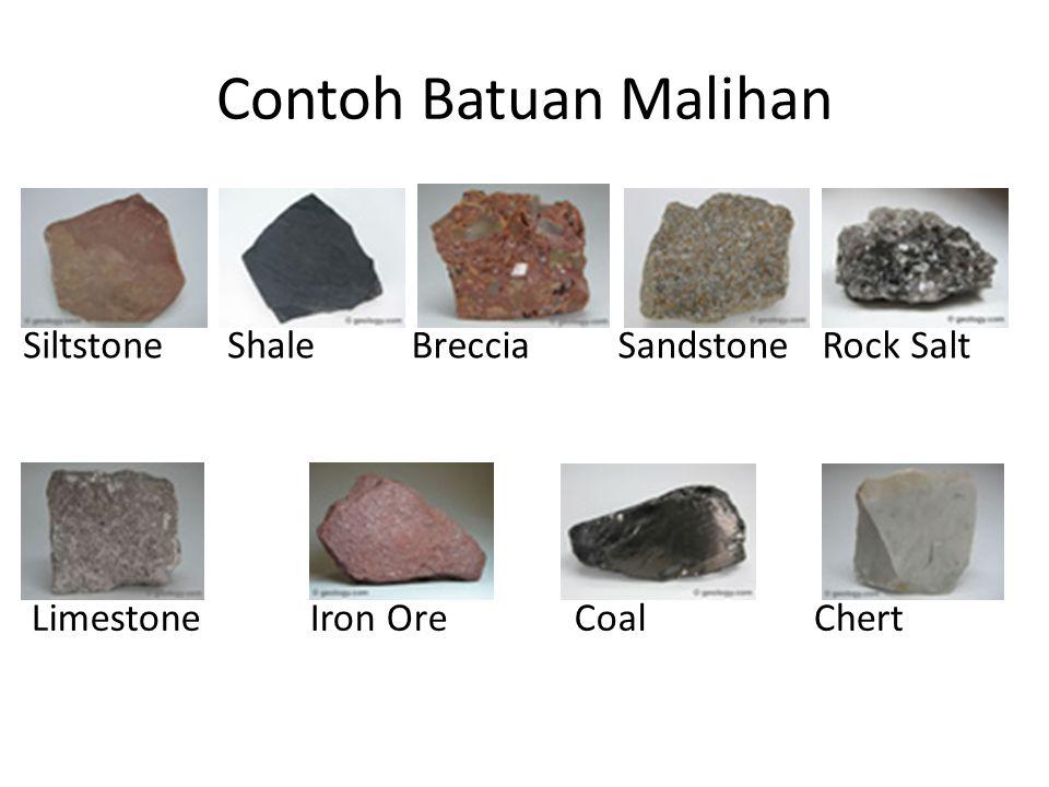 Contoh Batuan Malihan SiltstoneShaleBrecciaSandstoneRock Salt LimestoneIron OreCoalChert