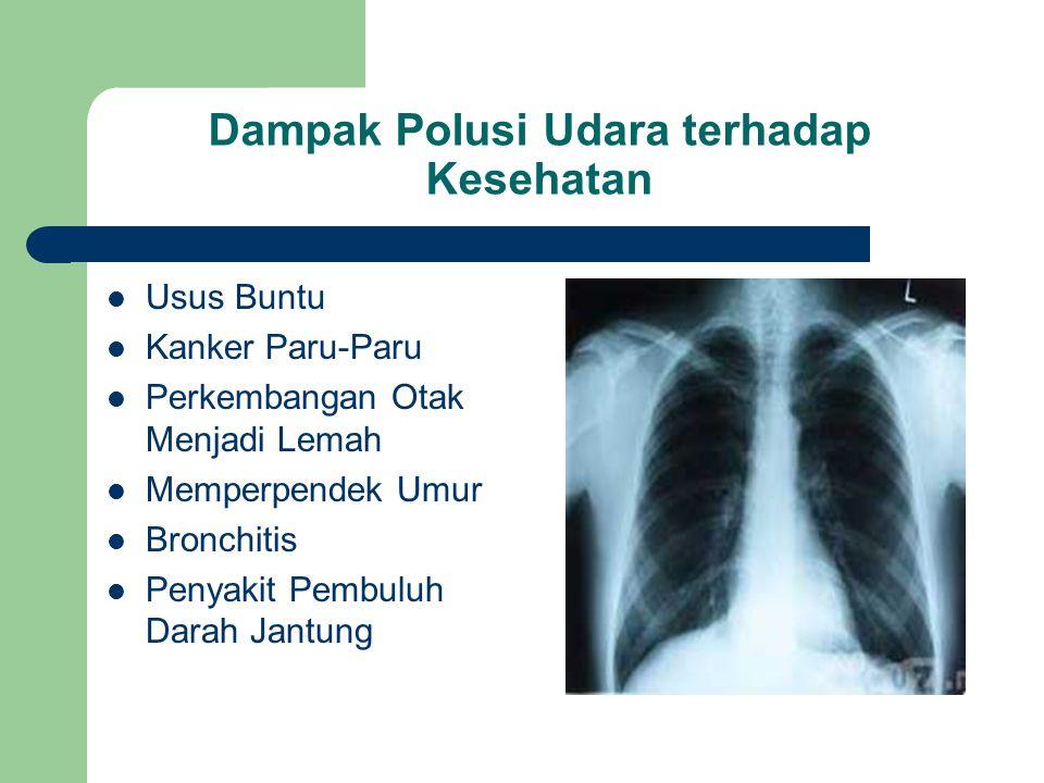 Dampak Polusi Udara terhadap Kesehatan Usus Buntu Kanker Paru-Paru Perkembangan Otak Menjadi Lemah Memperpendek Umur Bronchitis Penyakit Pembuluh Darah Jantung