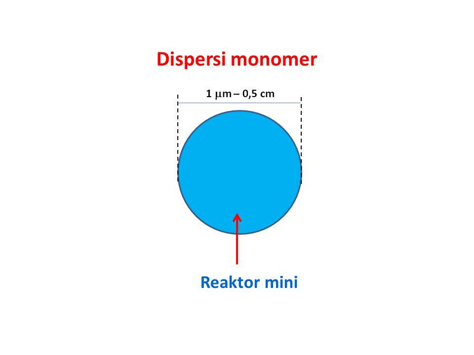 1  m – 0,5 cm Dispersi monomer Reaktor mini