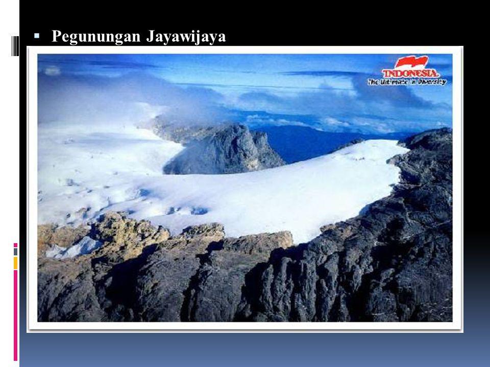  Pegunungan Jayawijaya Pegunungan Jayawijaya adalah nama untuk deretan pegunungan yang terbentang memanjang di tengah provinsi Papua Barat dan Papua (Indonesia) hingga Papua Newguinea di Pulau Irian.