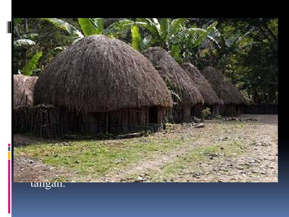  Rumah Adat Papua Nama rumah asli Papua adalah Honai yaitu rumah khas asli Papua yang dihuni oleh Suku Dani.