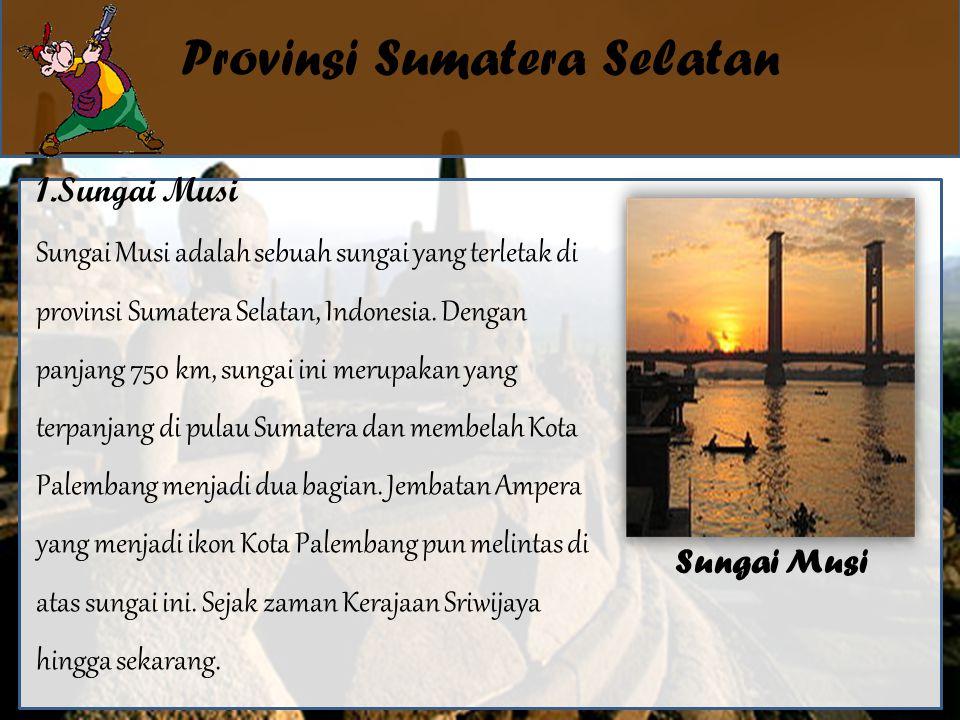 Provinsi Sumatera Selatan 1.Sungai Musi Sungai Musi adalah sebuah sungai yang terletak di provinsi Sumatera Selatan, Indonesia.