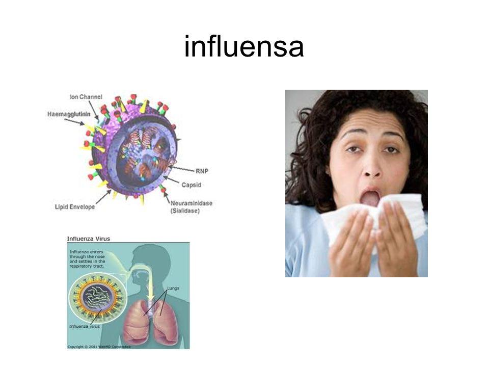 influensa