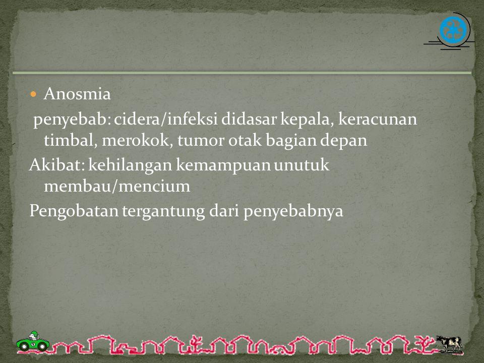 Anosmia penyebab: cidera/infeksi didasar kepala, keracunan timbal, merokok, tumor otak bagian depan Akibat: kehilangan kemampuan unutuk membau/mencium