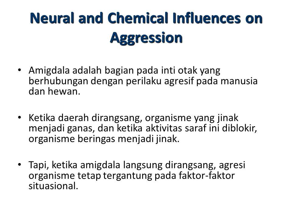 Bahan kimia tertentu telah ditunjukkan untuk mempengaruhi agresi pada hewan dan manusia, testosteron misalnya.