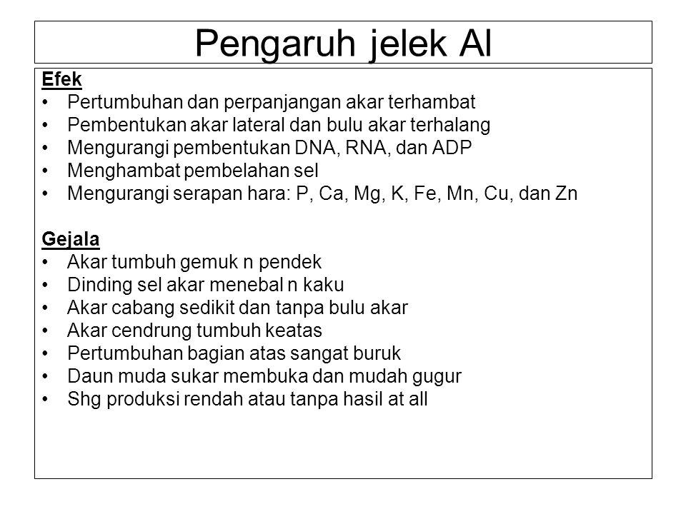 Pengapuran Aims: to eliminate bad effects of low pH (or neutralize acid soil) or to reduce H+ concentration in soil solution and H+ and Al -exch on soil colloids Yang dinetralisasi bukan hanya kemasaman aktif tapi juga cadangan, karena selalu seimbang.