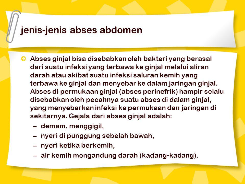 jenis-jenis abses abdomen Abses ginjal bisa disebabkan oleh bakteri yang berasal dari suatu infeksi yang terbawa ke ginjal melalui aliran darah atau akibat suatu infeksi saluran kemih yang terbawa ke ginjal dan menyebar ke dalam jaringan ginjal.