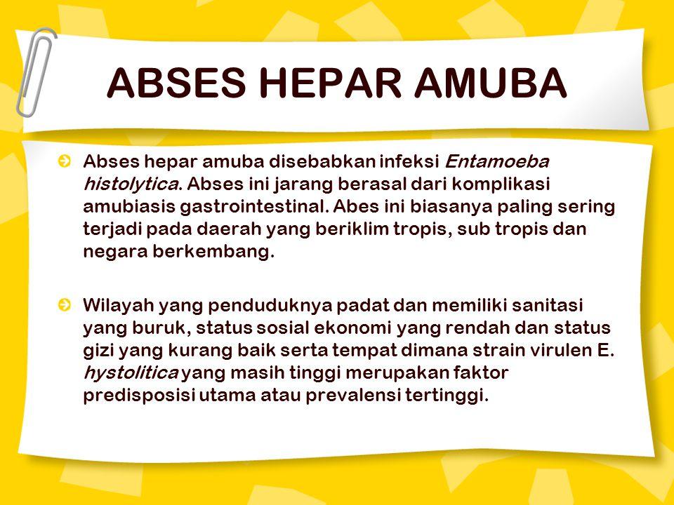 ABSES HEPAR AMUBA Abses hepar amuba disebabkan infeksi Entamoeba histolytica.