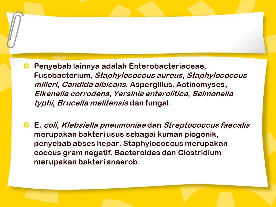 Penyebab lainnya adalah Enterobacteriaceae, Fusobacterium, Staphylococcus aureus, Staphylococcus milleri, Candida albicans, Aspergillus, Actinomyses,