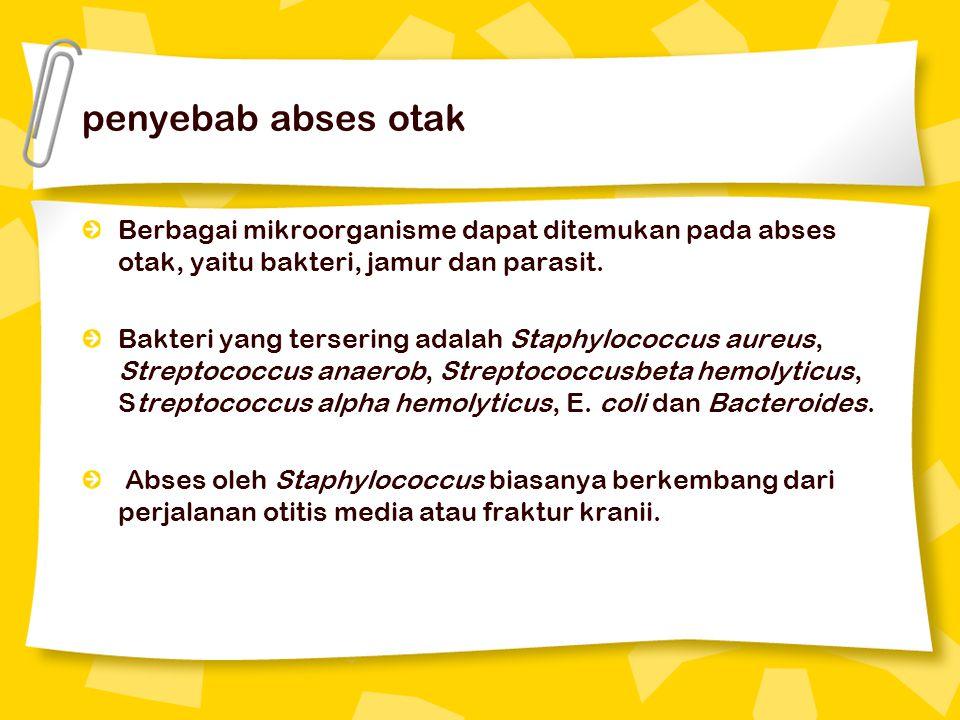 gejala abses hepar amuba Gejala abses hepar amuba yang dapat ditemukan antara lain: 1.