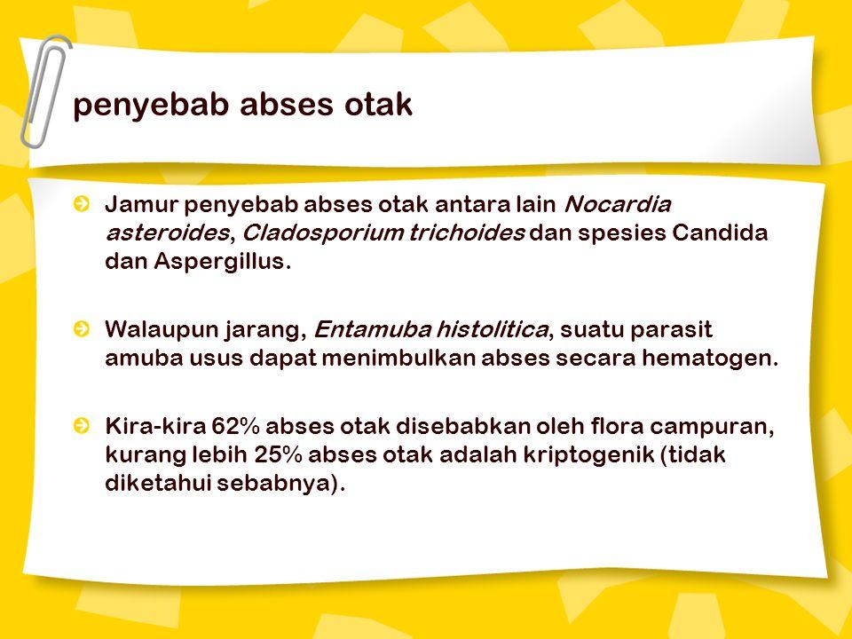 diagnosis abses hepar amuba Beberapa pemeriksaan yang dapat digunakan untuk diagnosis abses hepar amuba yaitu: 1.