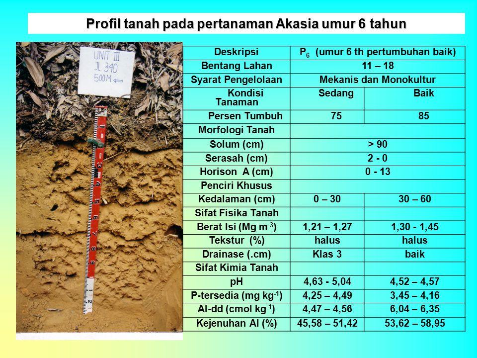 Profil tanah pada pertanaman Akasia umur 6 tahun DeskripsiP 6 (umur 6 th pertumbuhan baik) Bentang Lahan11 – 18 Syarat PengelolaanMekanis dan Monokult