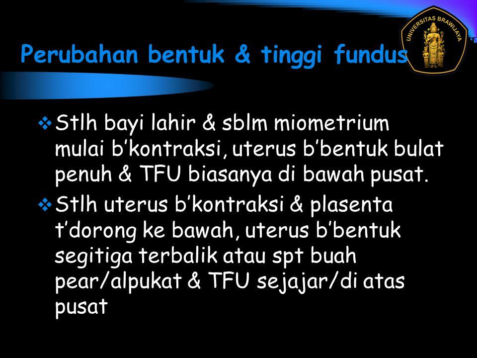 Perubahan bentuk & tinggi fundus  Stlh bayi lahir & sblm miometrium mulai b'kontraksi, uterus b'bentuk bulat penuh & TFU biasanya di bawah pusat.  S
