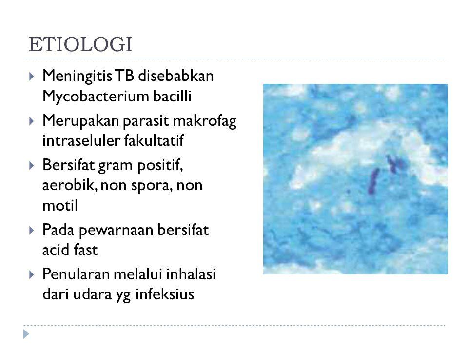 ETIOLOGI  Meningitis TB disebabkan Mycobacterium bacilli  Merupakan parasit makrofag intraseluler fakultatif  Bersifat gram positif, aerobik, non s