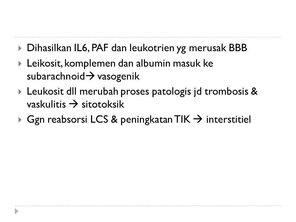  Dihasilkan IL6, PAF dan leukotrien yg merusak BBB  Leikosit, komplemen dan albumin masuk ke subarachnoid  vasogenik  Leukosit dll merubah proses
