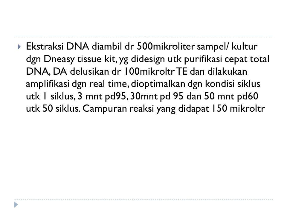  Ekstraksi DNA diambil dr 500mikroliter sampel/ kultur dgn Dneasy tissue kit, yg didesign utk purifikasi cepat total DNA, DA delusikan dr 100mikroltr