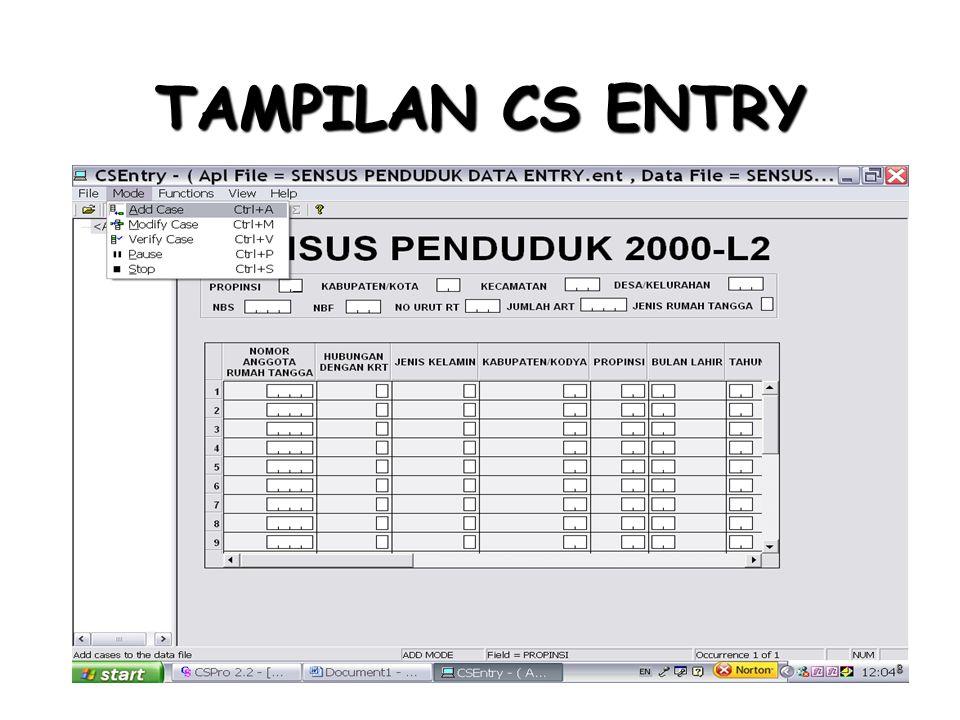 TAMPILAN CS ENTRY 8