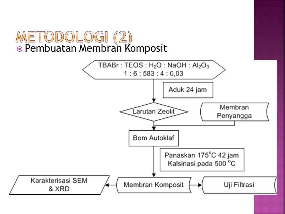  Pembuatan Membran Komposit