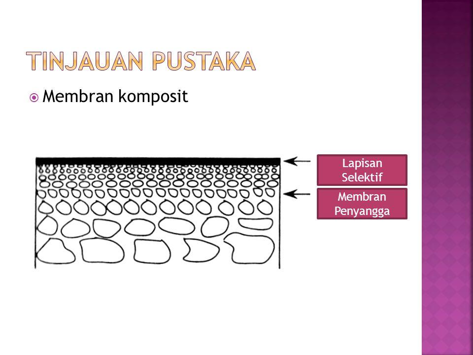  Membran komposit Lapisan Selektif Membran Penyangga