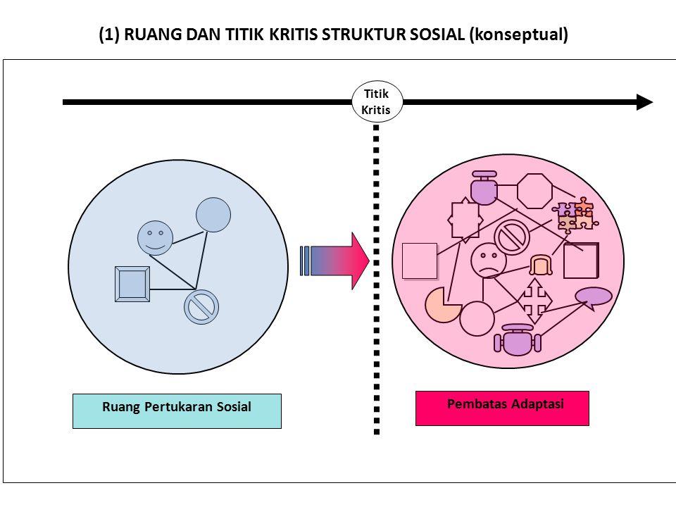 Ruang Pertukaran Sosial Pembatas Adaptasi Titik Kritis (1) RUANG DAN TITIK KRITIS STRUKTUR SOSIAL (konseptual)