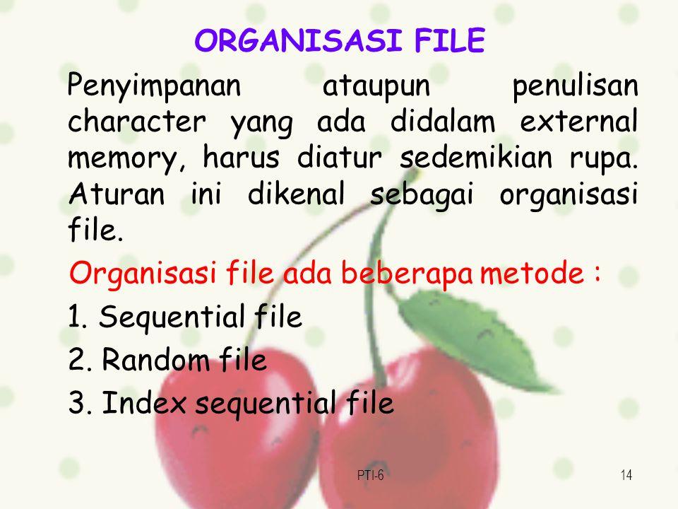 PTI-614 ORGANISASI FILE Penyimpanan ataupun penulisan character yang ada didalam external memory, harus diatur sedemikian rupa.