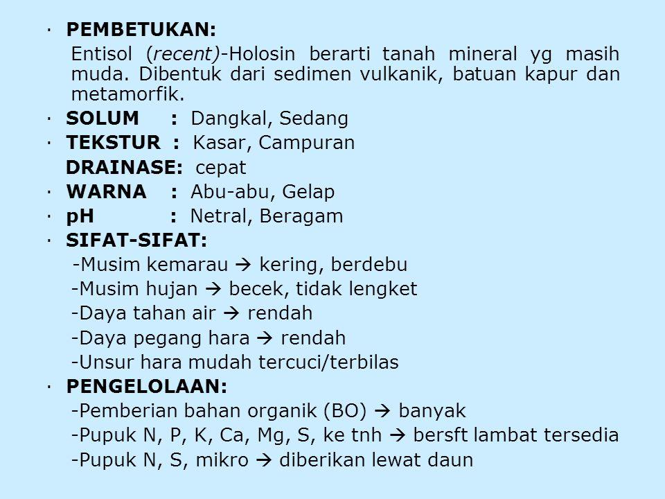 · PEMBETUKAN: Entisol (recent)-Holosin berarti tanah mineral yg masih muda.