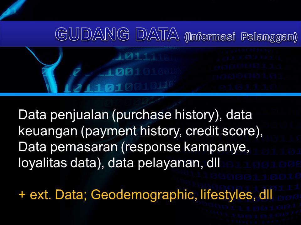 Data penjualan (purchase history), data keuangan (payment history, credit score), Data pemasaran (response kampanye, loyalitas data), data pelayanan,