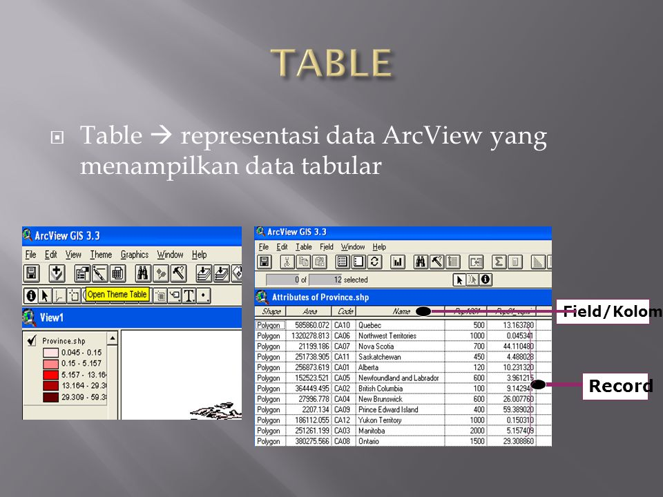  Table  representasi data ArcView yang menampilkan data tabular Field/Kolom Record