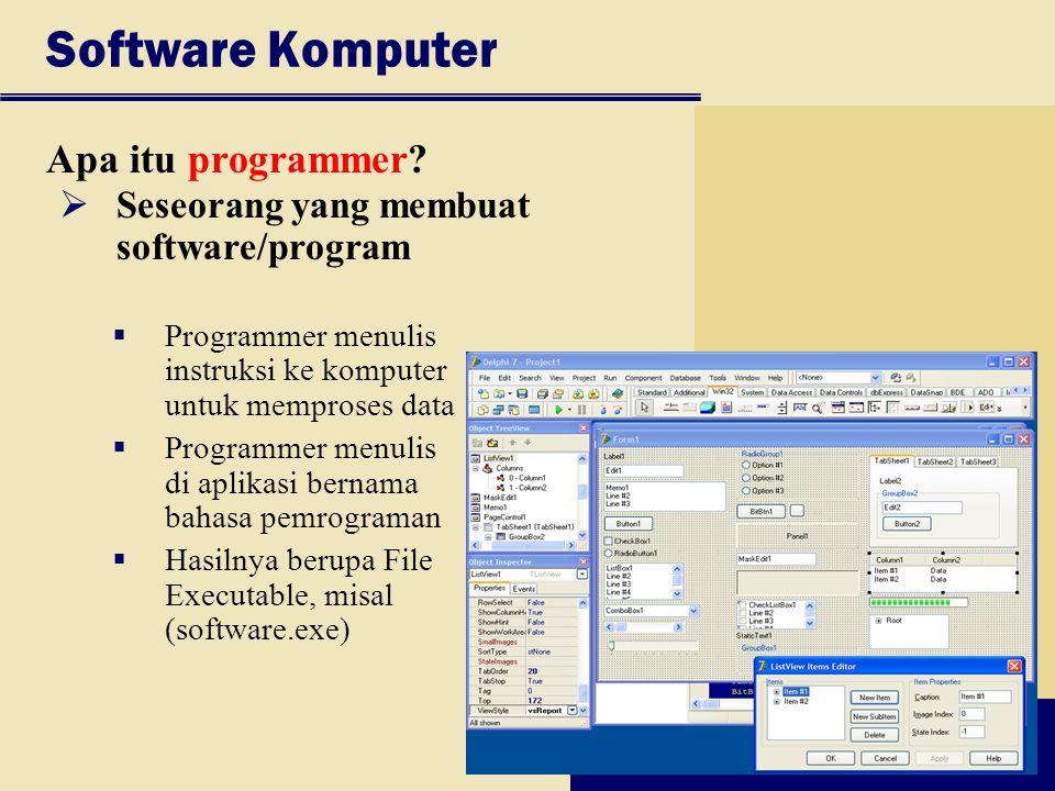 Software Komputer Apa itu programmer?  Seseorang yang membuat software/program  Programmer menulis instruksi ke komputer untuk memproses data  Prog