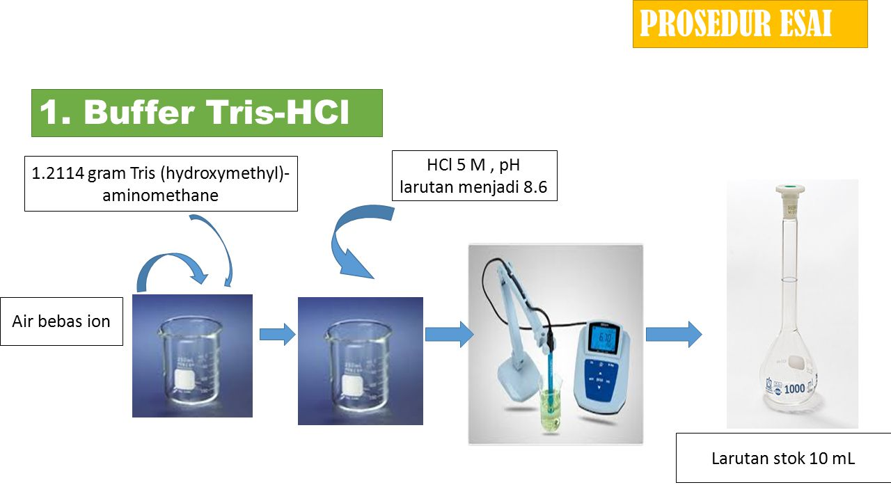 1.2114 gram Tris (hydroxymethyl)- aminomethane 1. Buffer Tris-HCl Air bebas ion HCl 5 M, pH larutan menjadi 8.6 Larutan stok 10 mL