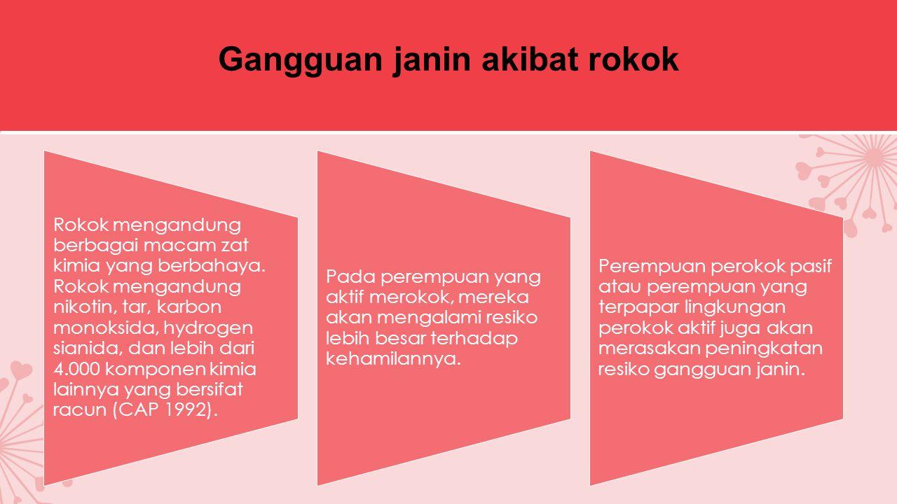Gangguan janin akibat rokok Rokok mengandung berbagai macam zat kimia yang berbahaya.