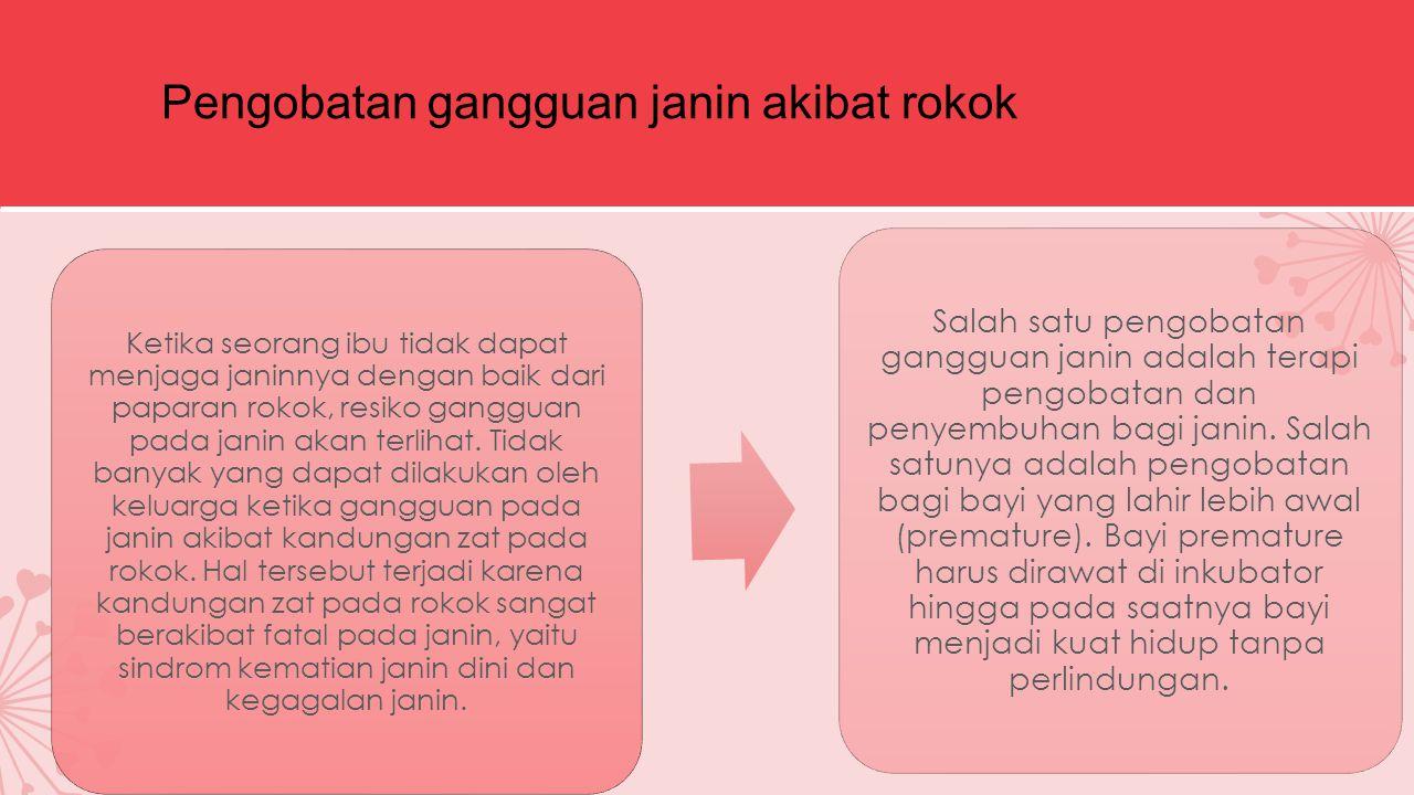 Pengobatan gangguan janin akibat rokok Ketika seorang ibu tidak dapat menjaga janinnya dengan baik dari paparan rokok, resiko gangguan pada janin akan terlihat.