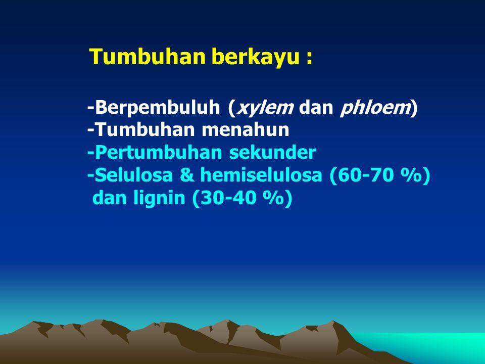 PENDAHULUAN Dendrologi : ( dendros : pohon, logos : ilmu) Ilmu pengetahuan ttg pohon, terutama yg tumbuh di hutan (htn alam atau htn tanaman) Pohon :