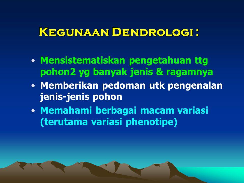 Aspek-aspek yang disinggung dlm pembahasan suatu jenis tumbuhan: Taksonomi Sifat botanis (morfologi) Ekologi (habitat, penyebaran) Kegunaan terpenting