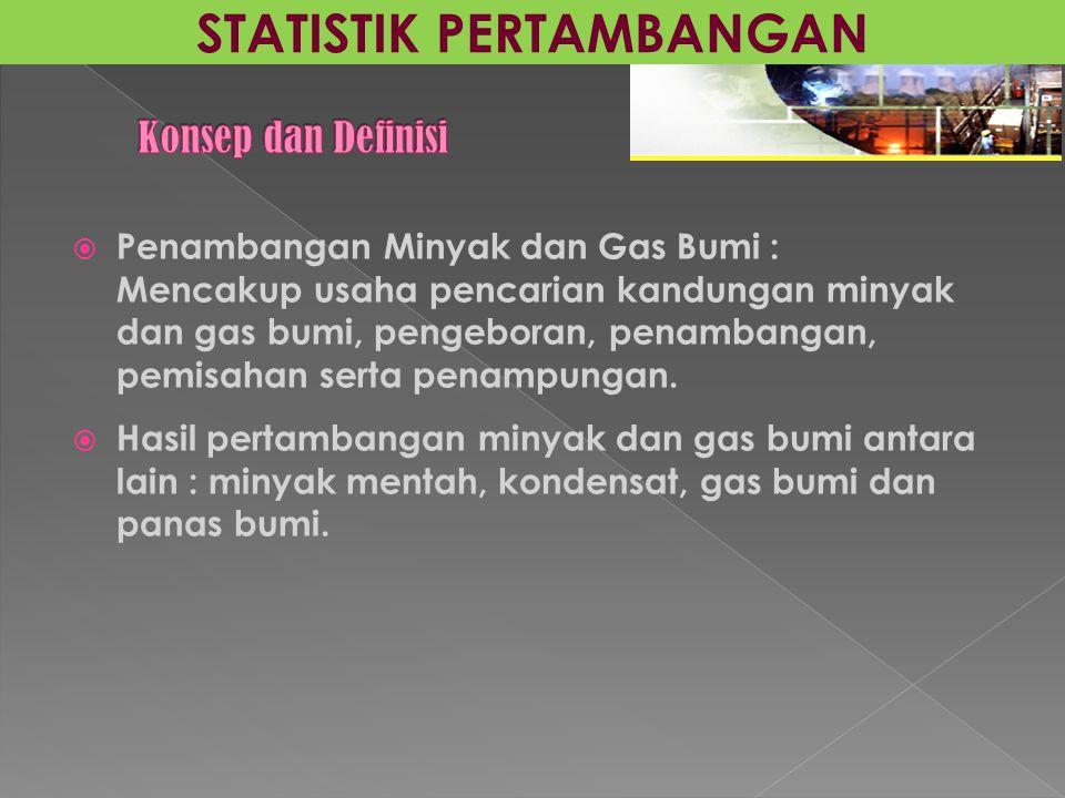  Penambangan Minyak dan Gas Bumi : Mencakup usaha pencarian kandungan minyak dan gas bumi, pengeboran, penambangan, pemisahan serta penampungan.  Ha