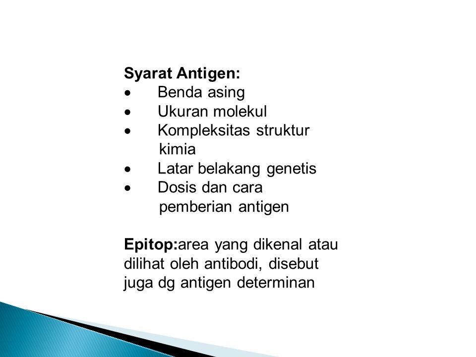 Syarat Antigen:  Benda asing  Ukuran molekul  Kompleksitas struktur kimia  Latar belakang genetis  Dosis dan cara pemberian antigen Epitop:area yang dikenal atau dilihat oleh antibodi, disebut juga dg antigen determinan