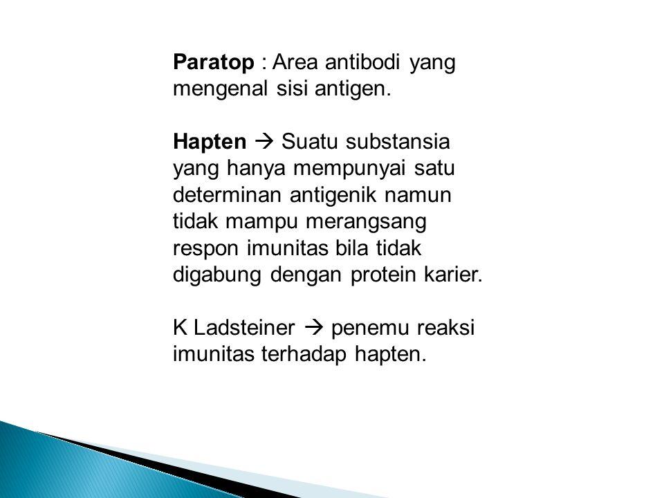 Paratop : Area antibodi yang mengenal sisi antigen.