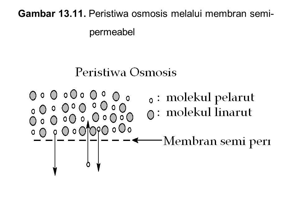Gambar 13.11. Peristiwa osmosis melalui membran semi- permeabel