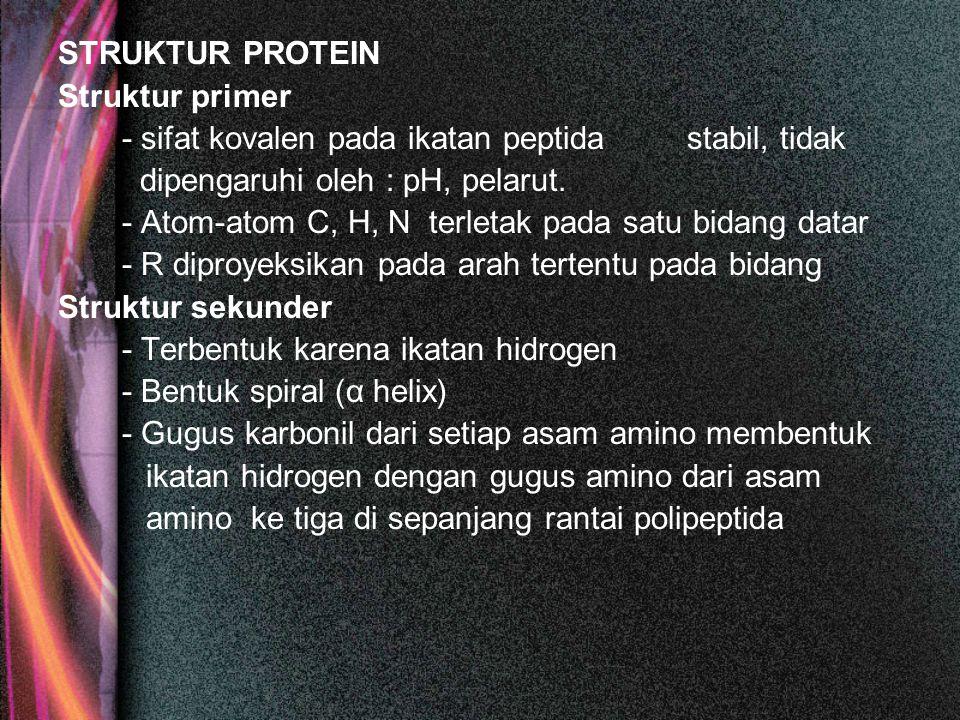 STRUKTUR PROTEIN Struktur primer - sifat kovalen pada ikatan peptida stabil, tidak dipengaruhi oleh : pH, pelarut. - Atom-atom C, H, N terletak pada s