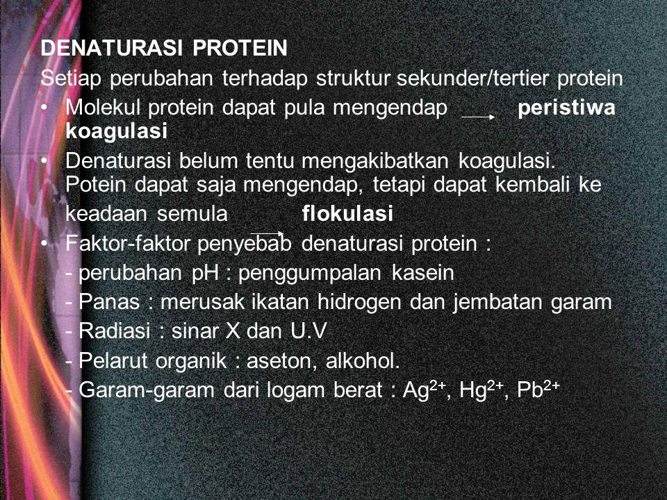 DENATURASI PROTEIN Setiap perubahan terhadap struktur sekunder/tertier protein Molekul protein dapat pula mengendap peristiwa koagulasi Denaturasi bel