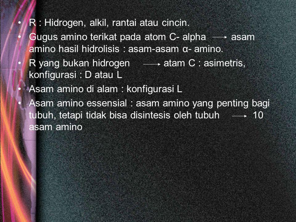 R : Hidrogen, alkil, rantai atau cincin. Gugus amino terikat pada atom C- alpha asam amino hasil hidrolisis : asam-asam α- amino. R yang bukan hidroge